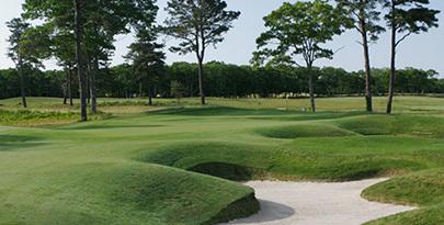 Large vineyard golf course2